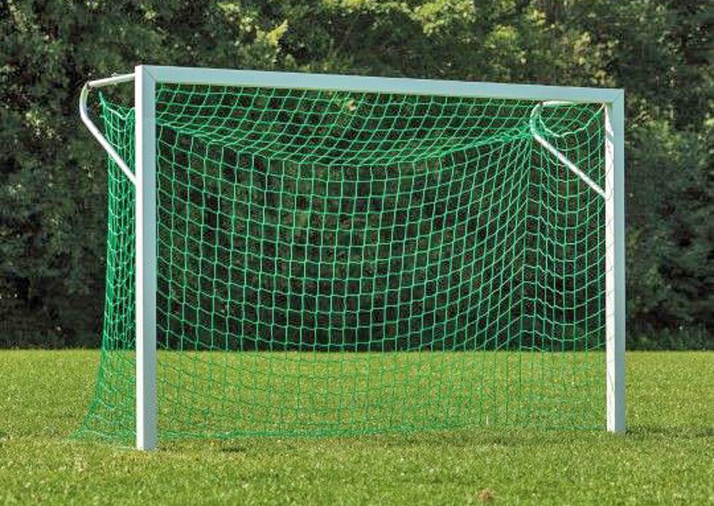 Netz für Kleinfeldtor klein